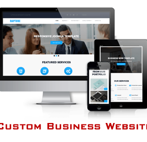 custom business website development services in delhi