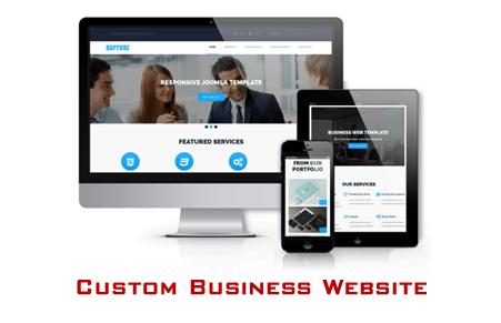 custom business website development services in delhi