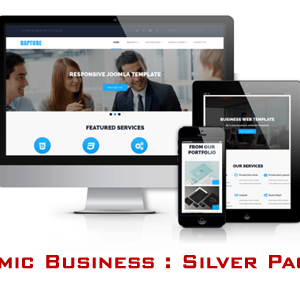Dynamic Business Web : Silver Package